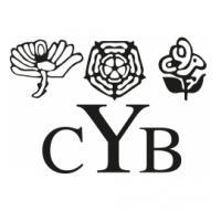 YCB Discretionary Development Grant