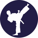 Taekwondo Icon