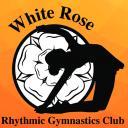Rhythmic Gymnastics Assistant Coach Icon